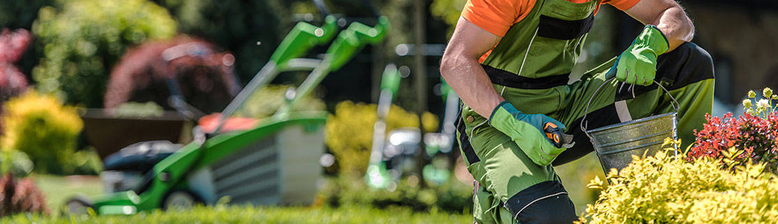 Credit Card Processing for Landscapers